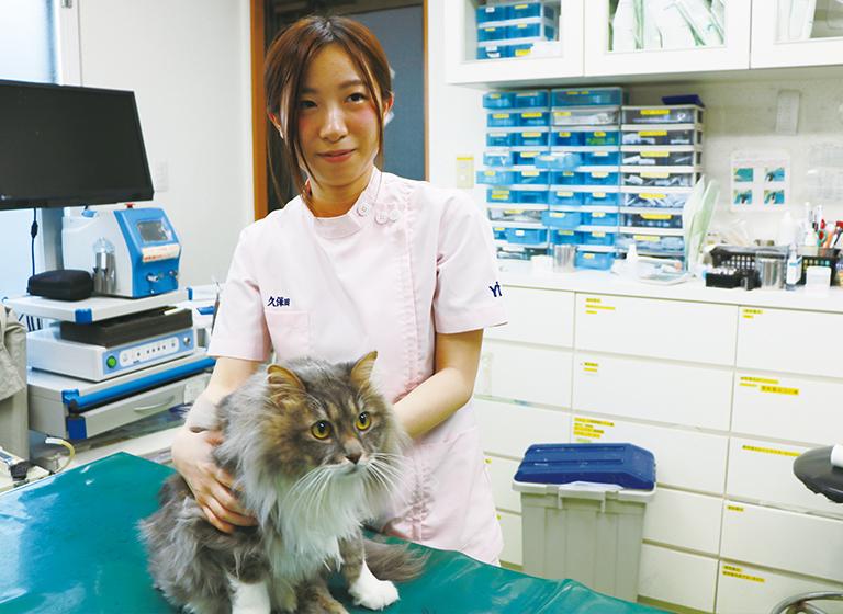京都中央動物病院2