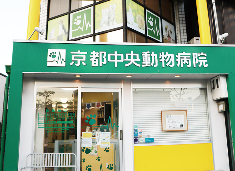京都中央動物病院3