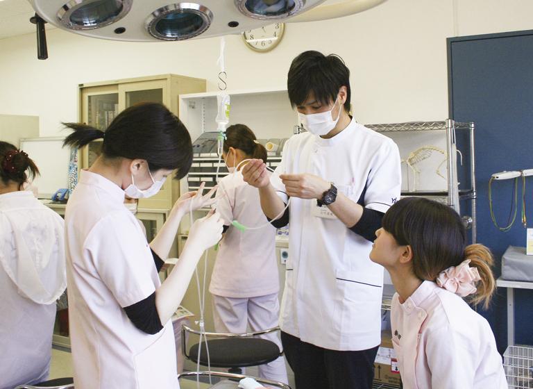 動物看護師統一認定試験の受験可能校
