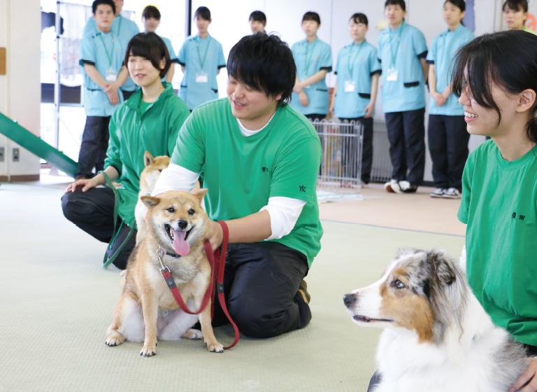 まずは犬とのコミュニケーション方法を、実際の訓練で学習
