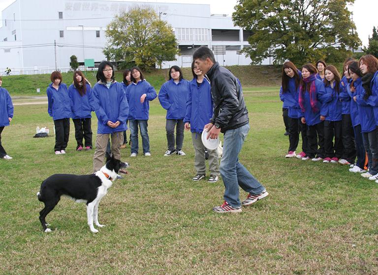 どんな犬種、年齢、性格の犬にも対応できる実践力を身につける