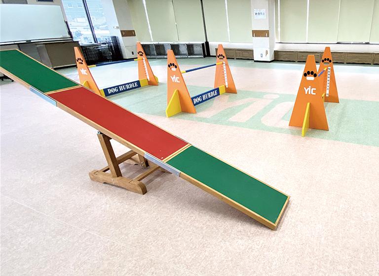 ドッグトレーニングルーム