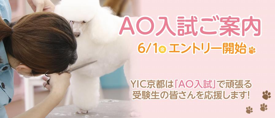 AO入試ご案内 6/1(金)エントリー開始 YIC京都は「AO入試」で頑張る受験生の皆さんを応援します!