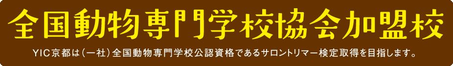 全国動物専門学校協会加盟校 YIC京都は(一社)全国動物専門学校公認資格であるサロントリマー検定取得を目指します。