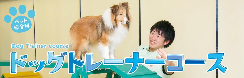 ペット総合科 ドッグトレーナーコース