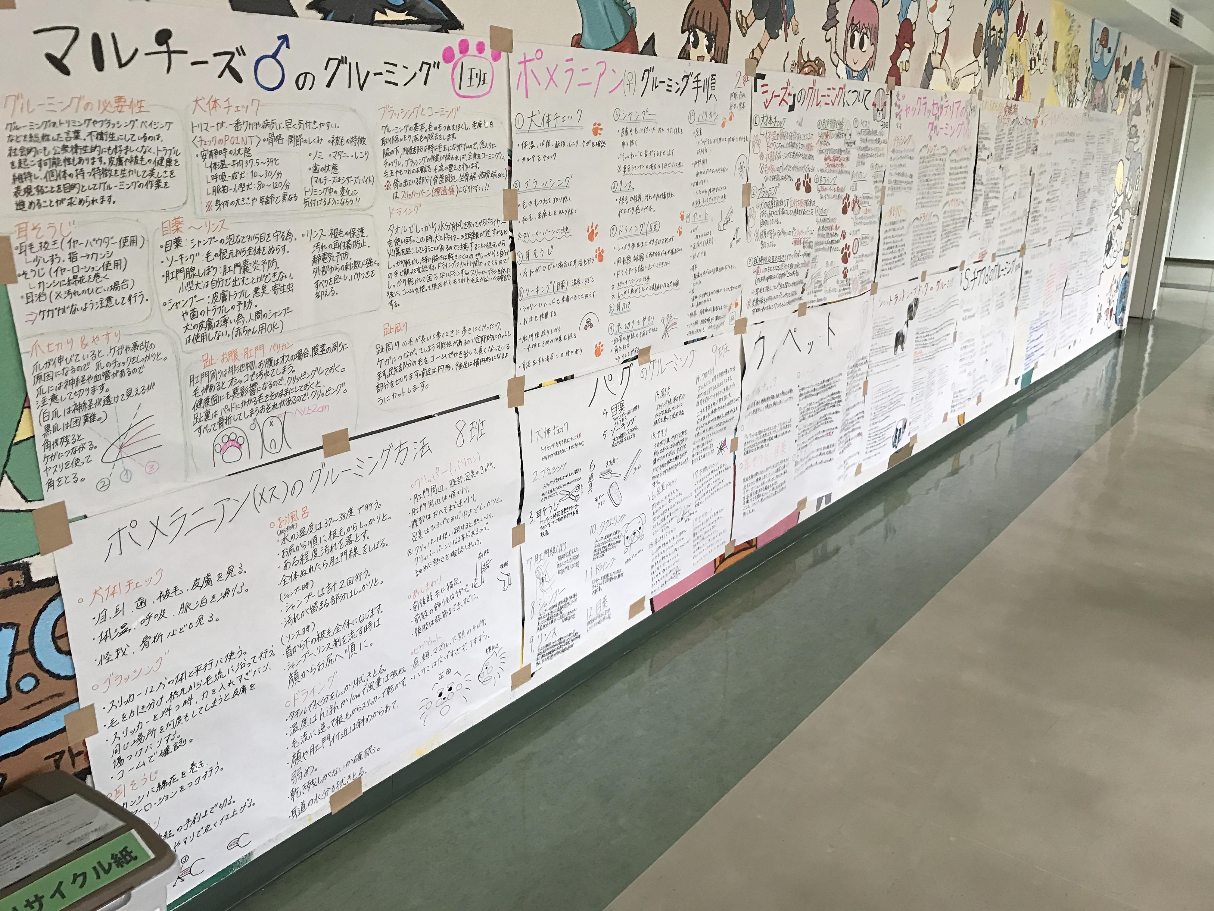 京都 動物 専門学校