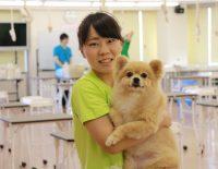 京都で学ぶ動物の専門学校