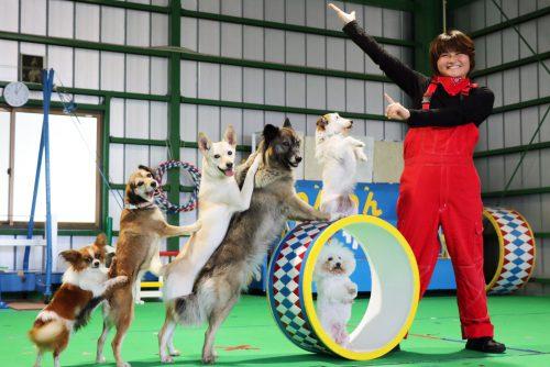 YIC京都ペット総合専門学校 ペット総合科 ドッグトレーナーコース 卒業生イメージ3