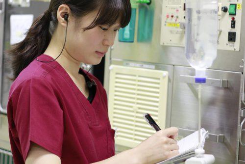 YIC京都ペット総合専門学校 動物看護科 卒業生イメージ1