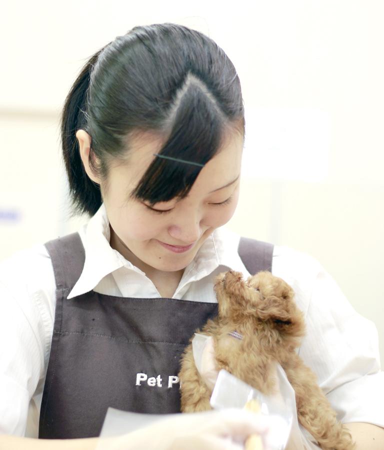 YIC京都ペット総合専門学校 ペット総合科 ペットアドバイザーコース 卒業生
