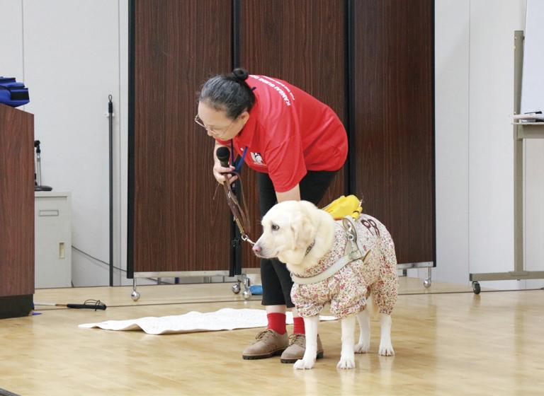 盲導犬センター