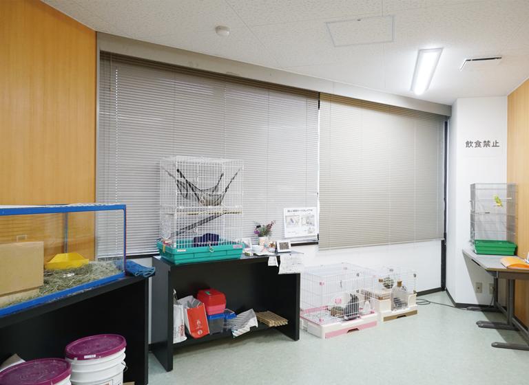小動物飼育実習室