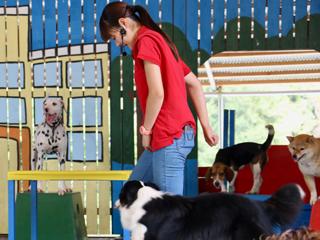 動物園飼育宿泊研修2