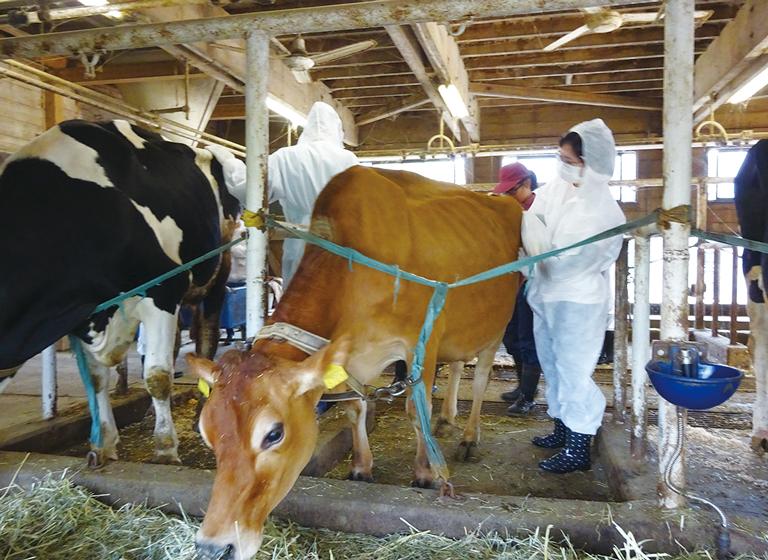 農業系高校での研修
