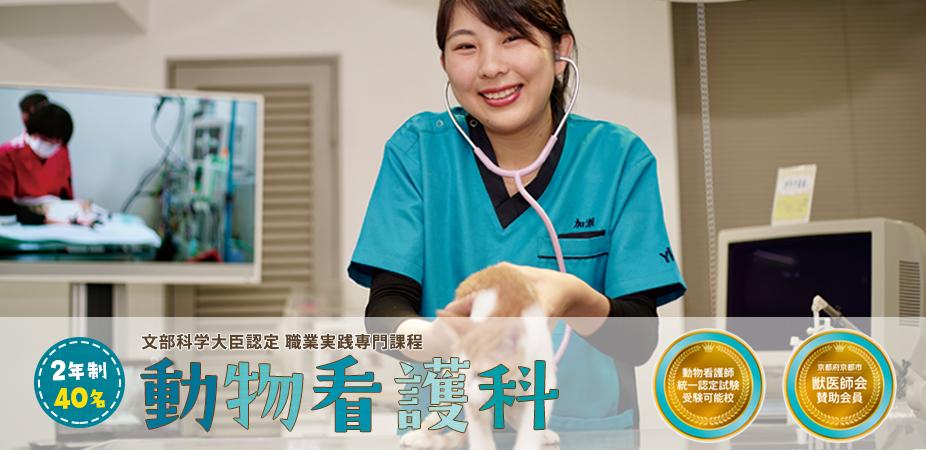 専門学校で動物看護師などの資格取得を目指すなら【YIC京都ペット総合専門学校】の動物看護科へ