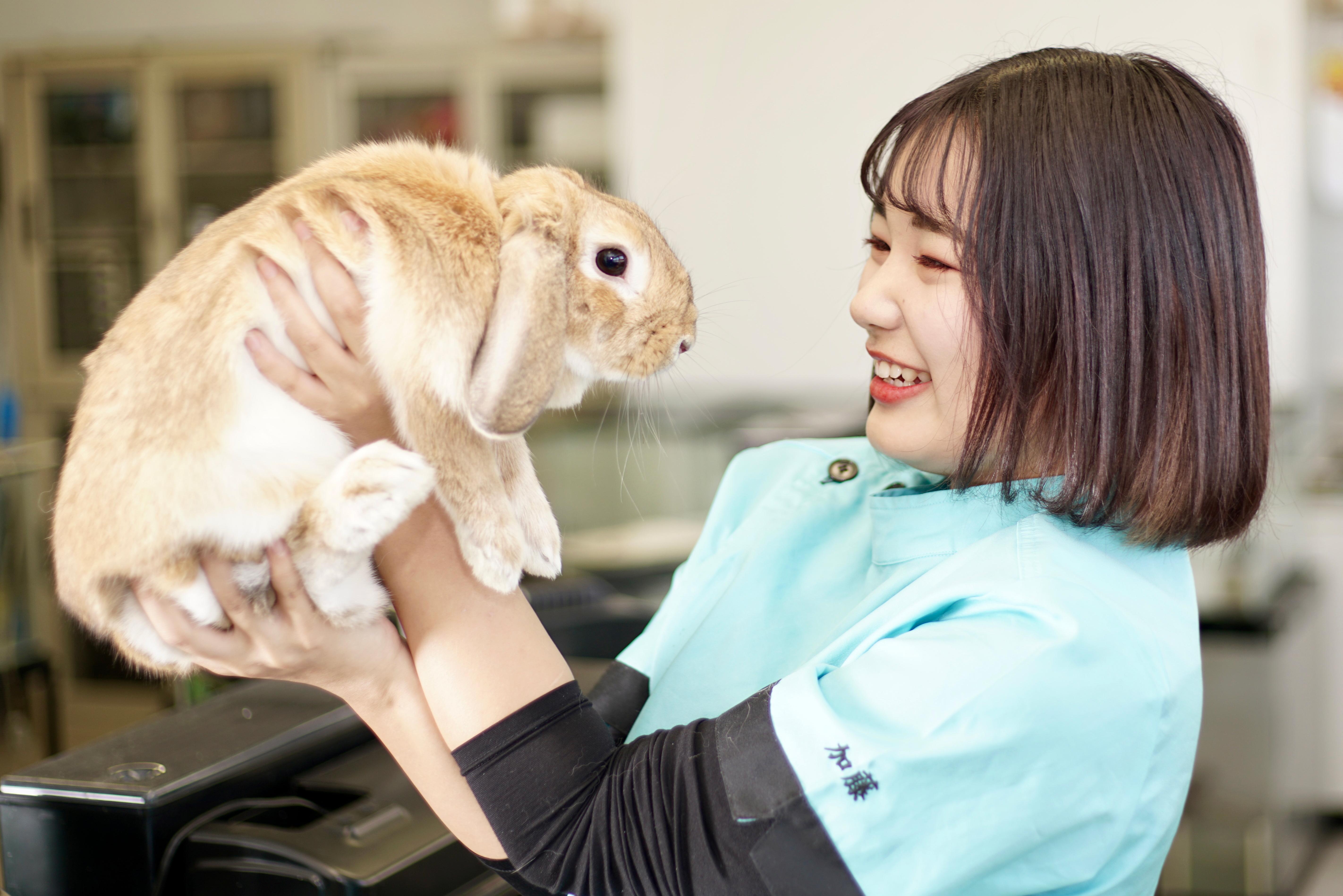 動物看護師で就職するには?