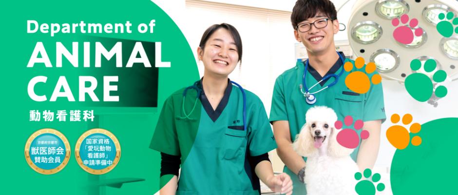 動物看護科